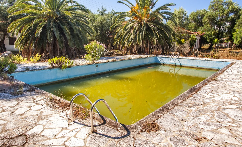 Algae as a problem for your pool